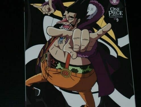 Release Teardown: One Piece DVD Collection 9