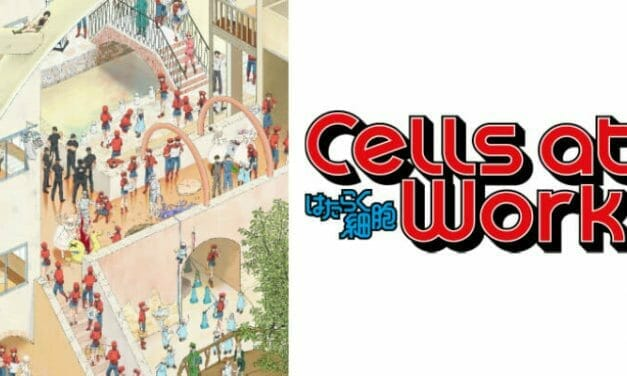 Cells At Work! Gets Second Anime Season