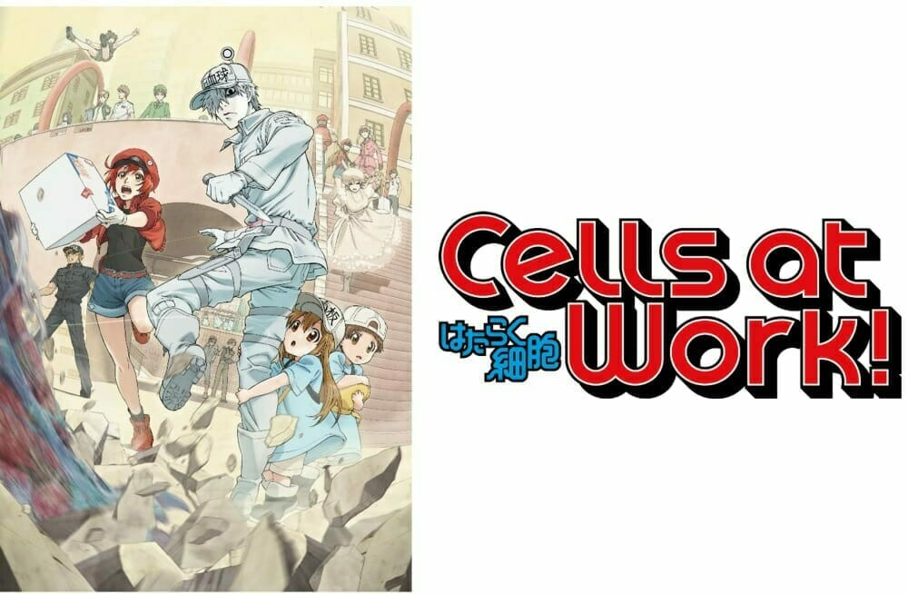 Cells At Work! Horizontal Visual