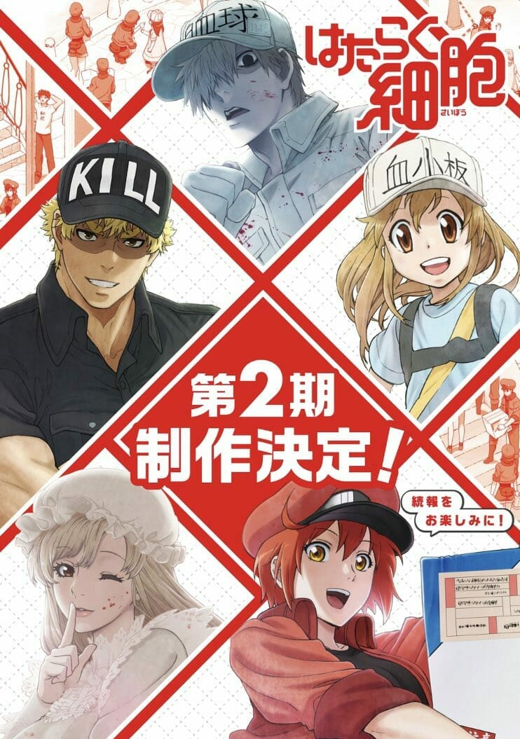 Cells At Work Season 2 Visual